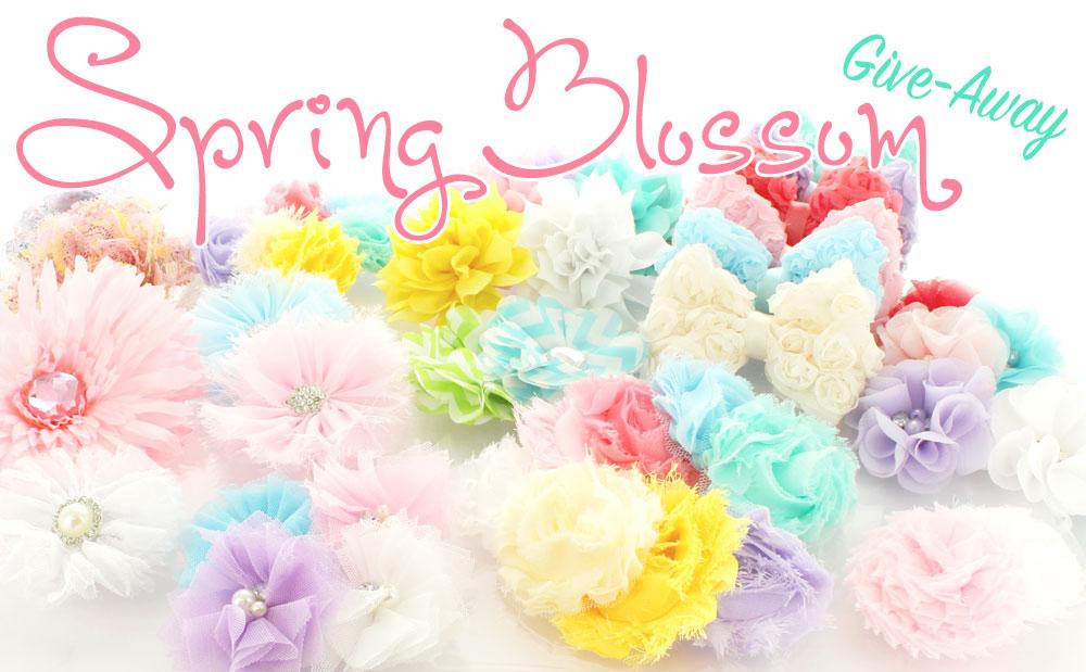 Spjring Shabby Flower Give-away Banner