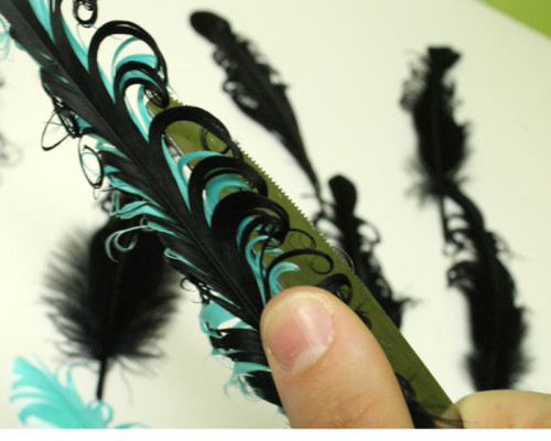 curl-feather