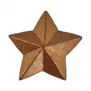 Antique Gold Star Flatback Resin Embellishment