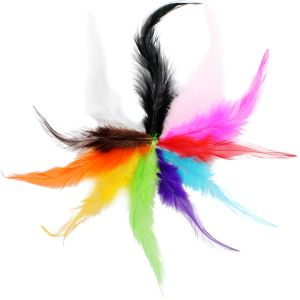 Pointy Hackle Feathers Main Image
